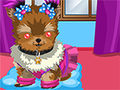 Yorkie Dress Up