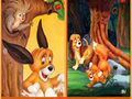 The Fox and the Hound 2 Similarities
